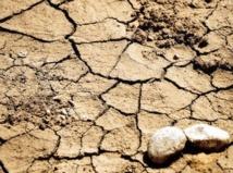 Lutte contre la désertification et la dégradation de l'environnement