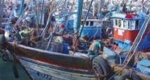 Hausse de 6% des débarquements de la pêche côtière et artisanale à fin novembre