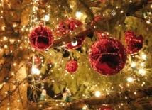 Chercher la bonne opportunité pour passer les fêtes de fin d'année