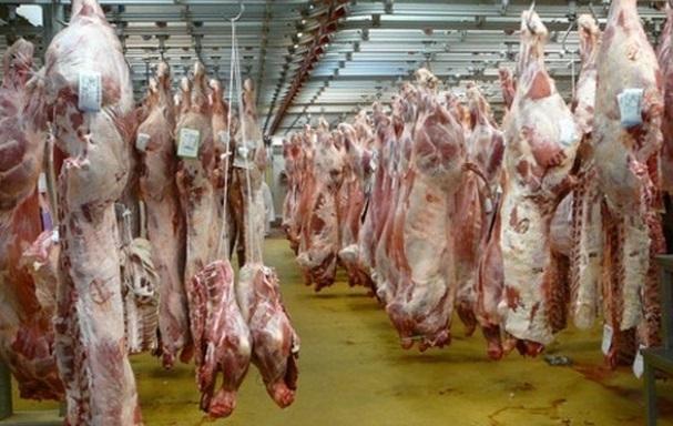 La communauté juive marocaine privée de viande casher