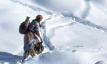 Plus de 1.130 personnes des régions montagneuses d'Ifrane bénéficient d'une opération humanitaire contre le froid