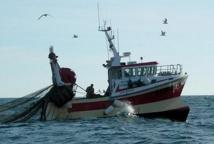 La pêche côtière et artisanale maintient son cap