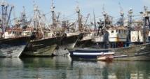 Le spectre d'une catastrophe écologique plane sur le port de Dakhla