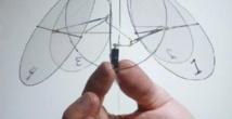 Des chercheurs créent une méduse volante