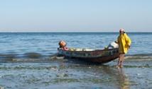 Les patrons des embarcations de pêche artisanale mécontents
