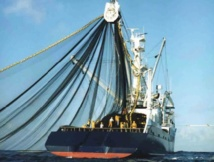 La Chambre des représentants adopte le protocole de pêche Maroc-UE