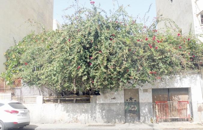 Le caïd de Benjdia occupe  une villa sans droit ni titre