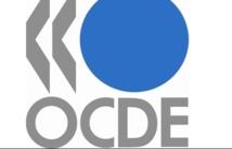 Le Maroc reconduit à la vice-présidence du Centre de développement de l'OCDE