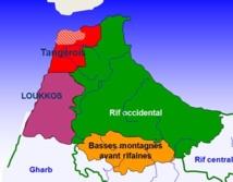 107 millions de DH pour l'appui aux agriculteurs de Tanger-Tétouan