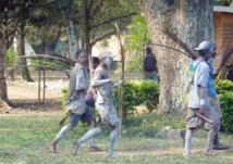 Tribalisme, régionalisme et développement en Afrique