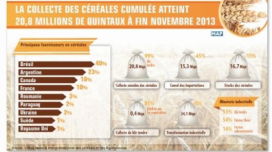 La collecte des céréales cumulée  atteint 20,8 millions de quintaux