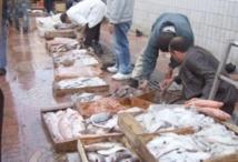 Meknès se dote d'un  marché de gros de poisson