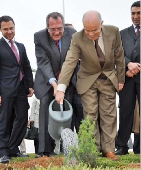 Un cèdre pour consolider les relations entre le Maroc et le Liban