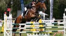 Distinction des  cavaliers marocains