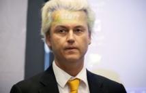 Des milliers de plaintes contre Wilders Suite à ses propos anti-marocains