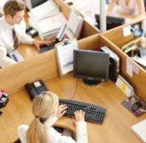Les stages pratiques, un tremplin pour l'accès des étudiants au marché du travail