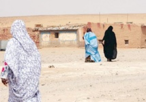 Distribution à Tindouf de tracts en faveur de l'autonomie