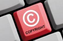 Des lois sur la propriété intellectuelle sont  essentielles pour le développement de l'Afrique