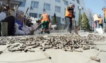 Arrestation de 70 séparatistes pro-russes à Kharkiv