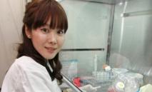 Affaire des cellules STAP: rififi dans  le monde feutré de la science au Japon