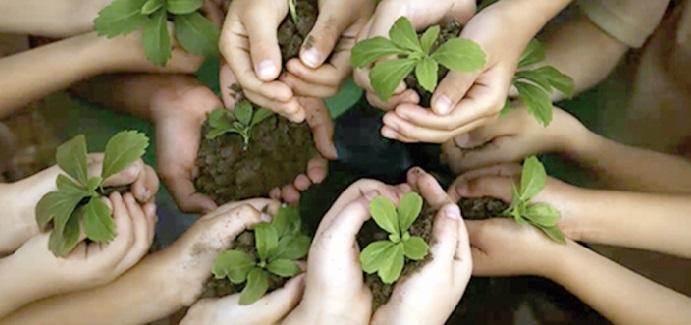 """Plantons 1000 arbres"", une  initiative de Casa Environnement"