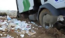 Rabat abrite un séminaire sur la gestion durable des déchets ménagers
