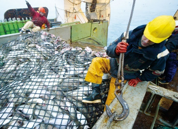 Bras de fer entre les professionnels de la pêche et Aziz Akhennouch