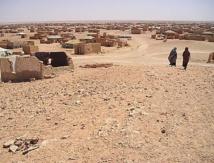 Les violations des droits de l'Homme dénoncées à Dakhla par une ONG des camps de Tindouf