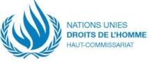 Des observateurs du HCDH en  visite au Sahara