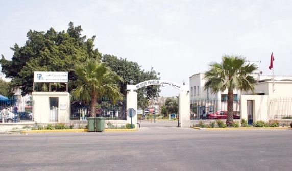 Les centres de santé en manque de sérums antivenimeux