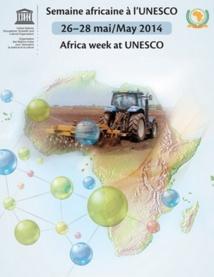 La richesse du patrimoine culturel  et artistique de l'Afrique célébrée à l'UNESCO