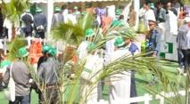 Arrivée à Tata de la Caravane OCP des palmiers-dattiers
