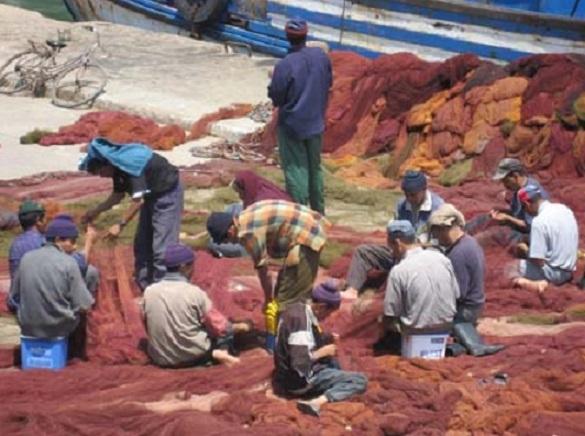 Les professionnels de la pêche voient rouge