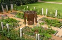Le Jardin d'essais  botaniques de Rabat  souffle sa première bougie