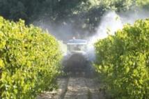 Des liens entre les pesticides et l'autisme