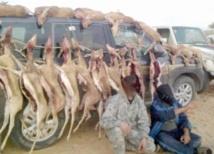 Les gardiens de la réserve de Safia menacés de mort par des braconniers