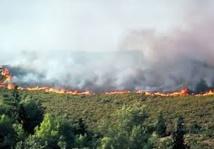 Incendie de forêt près de Tétouan