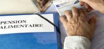 France : Les règles de la pension alimentaire