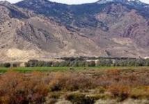 """Quatorze soldats tunisiens victimes d'une attaque """"terroriste"""" sur le mont Chaambi"""