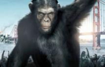 """""""La planète des singes""""  de retour sur les écrans"""