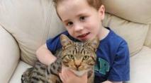 Insolite : Un enfant  sauvé par  son chat
