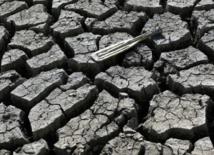 La sécheresse dans l'Ouest américain épuise les nappes d'eau souterraines