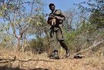 Ranger dans le Kruger: en première ligne de la guerre contre les braconniers