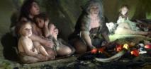 Moins d'hormones mâles a permis le développement de la civilisation humaine