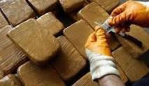 Démantèlement d'un réseau de trafic de drogue à Mohammedia