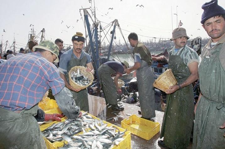 Le port de Tan Tan menacé de mort