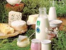 Les produits laitiers pourraient protéger du diabète