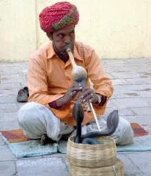 L'Inde des charmeurs de serpents appartient au passé