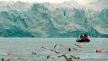 Au pied d'un glacier, des sexagénaires nagent dans des eaux polaires