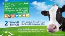 Une foire au service du  secteur de l'élevage et des  filières animales à Tadla Azilal